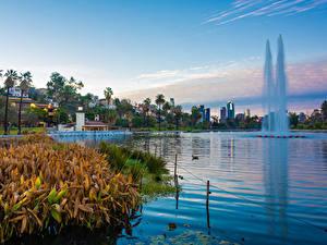 Обои Штаты Парки Озеро Здания Фонтаны Лос-Анджелес Echo Park Lake Природа