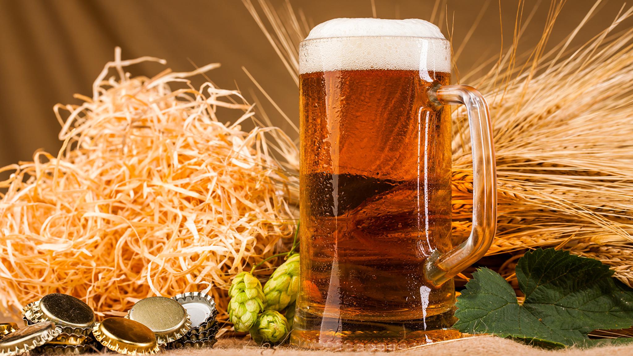 пиво история