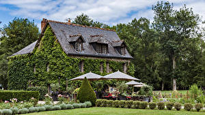 Картинки Франция Здания Ландшафтный дизайн Кусты Зонт Azay-le-Rideau Города