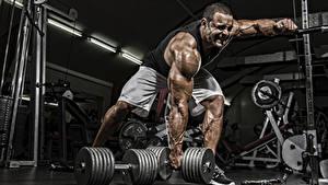 Фотографии Бодибилдинг Мужчины Гантеля Спортзал Мышцы Тренируется спортивные