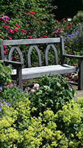 Фото Великобритания Сады Скамья Кусты Rosemoor Gardens Природа