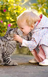 Фотографии Кот 2 Девочки ребёнок Животные