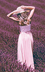Картинка Поля Лаванда Блондинки Руки Шляпе молодые женщины