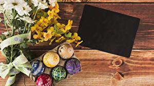 Картинка Праздники Пасха Хризантемы Доски Шаблон поздравительной открытки Ветки Яиц Дизайна Цветы