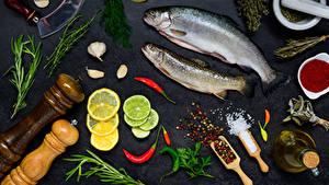 Фотография Морепродукты Рыба Лимоны Укроп Специи Чеснок Серый фон Соль