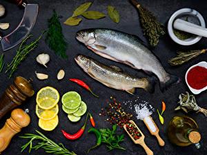 Фотография Морепродукты Рыба Лимоны Укроп Специи Чеснок Серый фон Соль Продукты питания