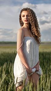Картинка Поля Платье Шатенка Модель Aleksandra, Alexey Yuryev