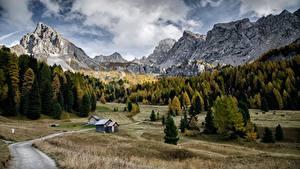 Картинки Гора Осенние Дороги Лес Италия Пейзаж Val Di Fassa, Dolomites