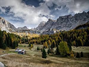 Картинки Гора Осенние Дороги Лес Италия Пейзаж Val Di Fassa, Dolomites Природа