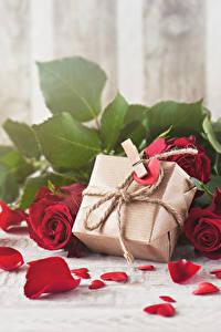 Картинки День всех влюблённых Розы Красный Лепестки Подарки Сердце Цветы