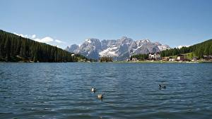 Картинка Италия Озеро Гора Пейзаж Альп Снег Lake Misurina Природа