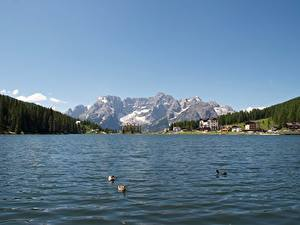 Картинка Италия Озеро Гора Пейзаж Альп Снег Lake Misurina