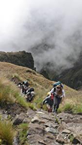 Фотографии Перу Камни Горы Альпинизм Туман Тропинка Трава Прогулка Cuzco, Machu Picchu, South America