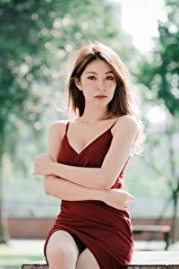 Фотография Азиатки Боке Сидящие Платья Рука Шатенки Смотрит девушка