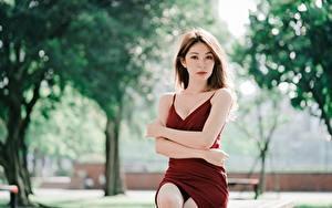 Фотография Азиатки Боке Сидящие Платья Рука Шатенки Смотрит