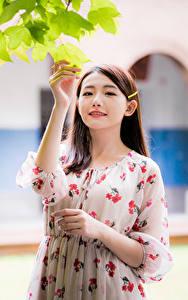 Обои Азиаты Платья Руки Ветвь Лист Боке Девушки