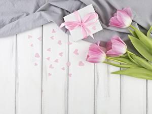 Фотография Тюльпаны День святого Валентина Подарки Сердечко Доски Цветы