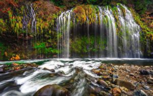 Фотографии Штаты Водопады Осень Камни Калифорния Утес Mossbrae Falls