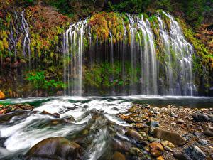 Фотографии Штаты Водопады Осень Камни Калифорния Утес Mossbrae Falls Природа