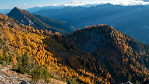 Картинка США Горы Осень Леса Вашингтон Carne Mountain