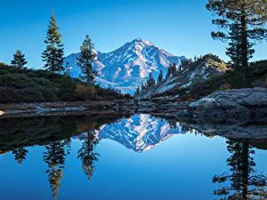 Картинки Штаты Горы Озеро Калифорния Ель Отражение Heart Lake Природа