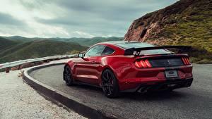 Картинки Ford Красная Вид сзади Mustang Shelby GT500 2019