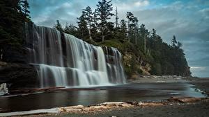 Фотография Канада Леса Водопады Скала Tsusiat, British Columbia Природа