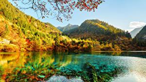 Фотография Цзючжайгоу парк Китай Парки Горы Осенние Озеро Леса Пейзаж Природа