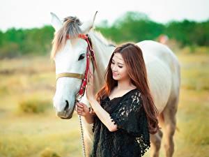Фото Лошади Шатенки Красивая Улыбается девушка Животные