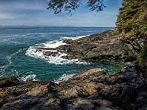 Картинки Канада Парки Море Берег Волны Vancouver Island Parks Природа