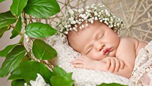 Картинки Младенец Спят Лист