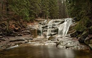 Обои Камень Леса Реки Водопады Природа