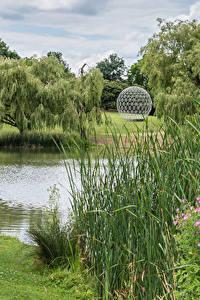 Обои Англия Озеро Парки Трава Surrey Lake Guildford Природа