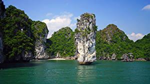 Фотография Вьетнам Тропики Залив Скала Lan Ha Bay