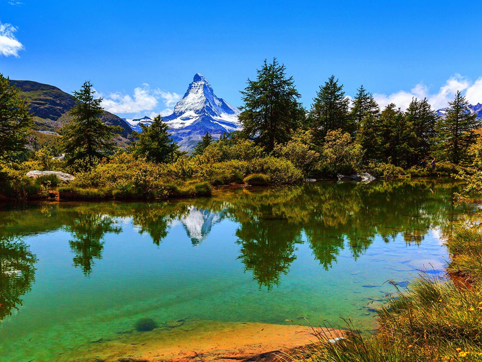 Обои альп Швейцария Zermatt Ель Горы Природа Озеро Кусты 1600x1200 Альпы ели кустов