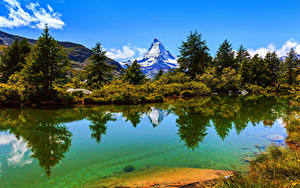 Обои Швейцария Озеро Горы Альпы Ель Кустов Zermatt Природа
