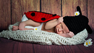 Картинки Доски Стена Младенец Шапки Спящий Дети
