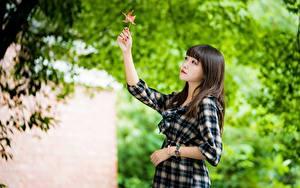 Фото Азиаты Размытый фон Листья Брюнетка Платье Девушки