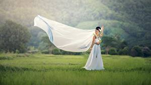 Картинки Азиаты Невеста Брюнетка Платье Трава Свадьба Девушки