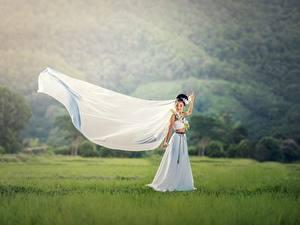 Картинки Азиаты Невеста Брюнетка Платье Трава Свадьба