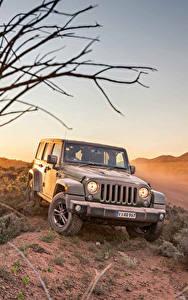 Обои Jeep Серый 2016 Wrangler Unlimited  75th Anniversary авто