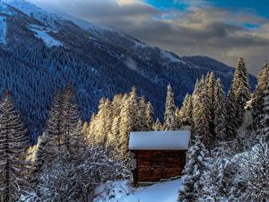 Фото Швейцария Горы Леса Зима Здания Альп Ели Снега Agina Goms Природа