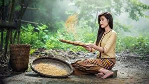 Фотографии Азиатка Брюнетка Сидит Зерна молодая женщина