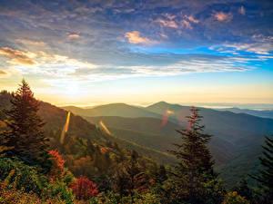 Фотография США Рассвет и закат Горы Леса Пейзаж Ели Transylvania North Carolina Природа
