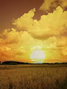 Фото Поля Небо Рассветы и закаты Облака Солнце