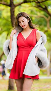 Картинки Азиатки Платья Красная Боке девушка