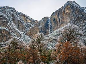 Фотографии США Парки Горы Йосемити Снегу