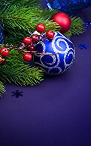 Фотографии Новый год Рябина Ветки Шар Снежинка