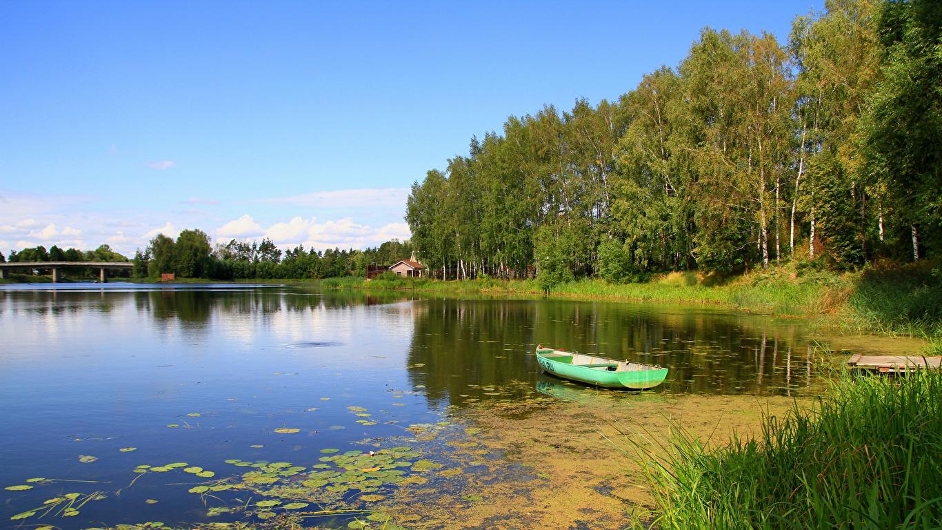 Картинка Россия Jaroslavlj Природа Лодки берег речка деревьев 1366x768 Реки река Побережье дерево дерева Деревья