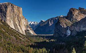 Картинка США Парки Гора Лес Пейзаж Йосемити Скала Природа